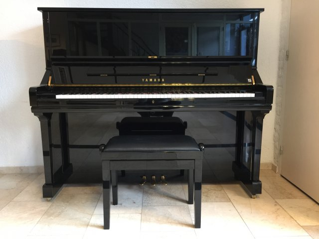 Yamaha U35 1,31 breed